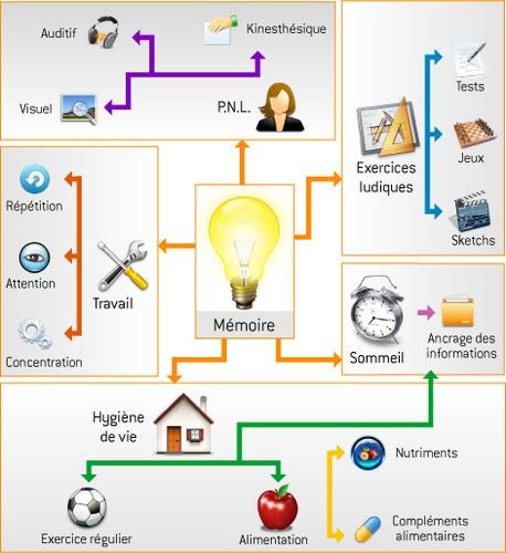 mind_mapping mémoire.jpg